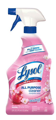 LYSOL Brand II All Purpose Cleaner  Trigger  Cherry Blossom  Pomegranate Photo