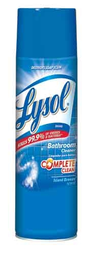 Lysol 174 Brand Foaming Bathroom Cleaner Aerosol Island